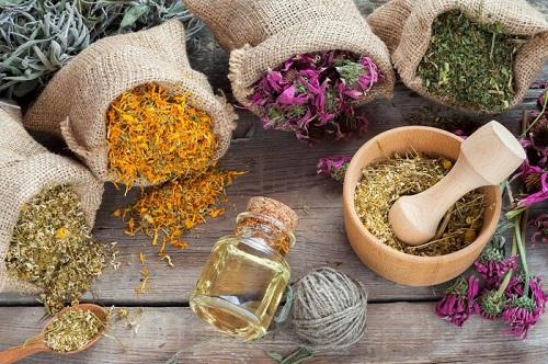 Bài thuốc của người Thái đen với thành phần hoàn toàn từ thảo dược của núi rừng