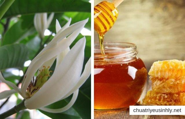 Mật ong và hoa ngọc lan chữa bệnh vô sinh