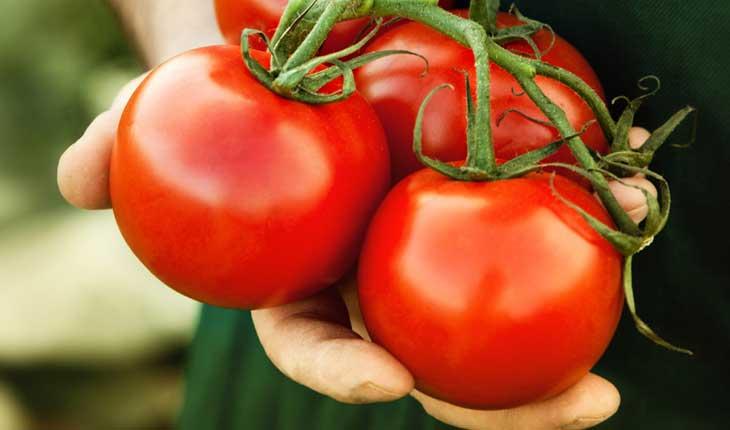 Cà chua- Thực phẩm tốt cho tinh trùng