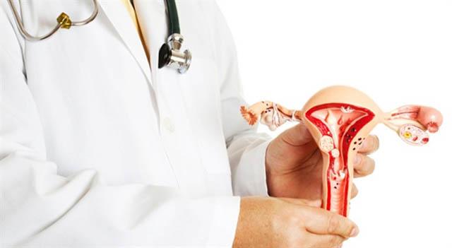 Những trục trặc ở cơ quan sinh sản đều có thể ảnh hưởng đến khả năng thụ thai