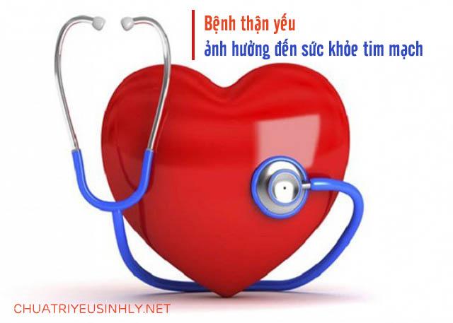 Bệnh thận yếu ảnh hưởng gì đến sức khỏe tim mạch