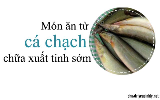 chữa xuất tinh sớm với món ăn từ cá chạch