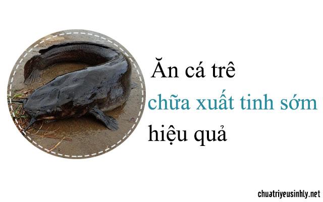 Chữa xuất tinh sớm với món ăn từ cá trê