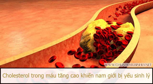 Kiểm soát tốt cholesterol trong máu chính là cách phòng chống yếu sinh lý cho nam giới